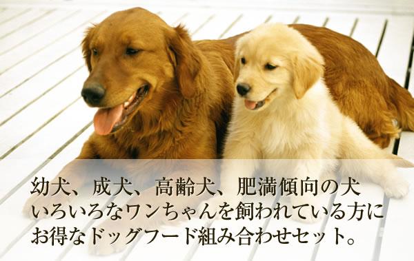 幼犬、成犬、高齢犬、肥満傾向の犬 いろいろなワンちゃんを飼われている方にお得なドッグフード組み合わせセット。